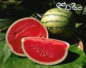 خواص فراوان هندوانه میوه تابستانی