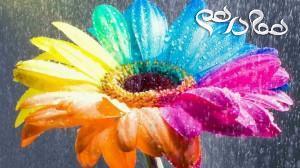 گل های سمی با زیبایی چشم نواز را بشناسید